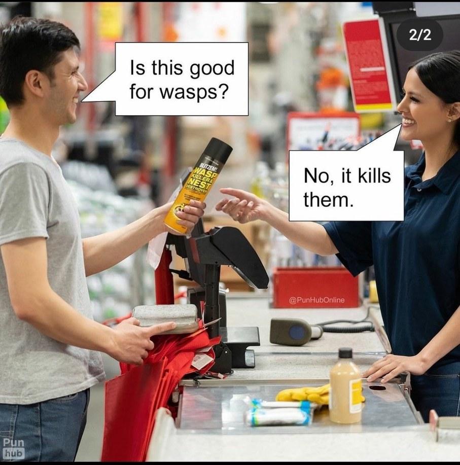 Wasps - meme
