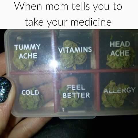 Bud - meme
