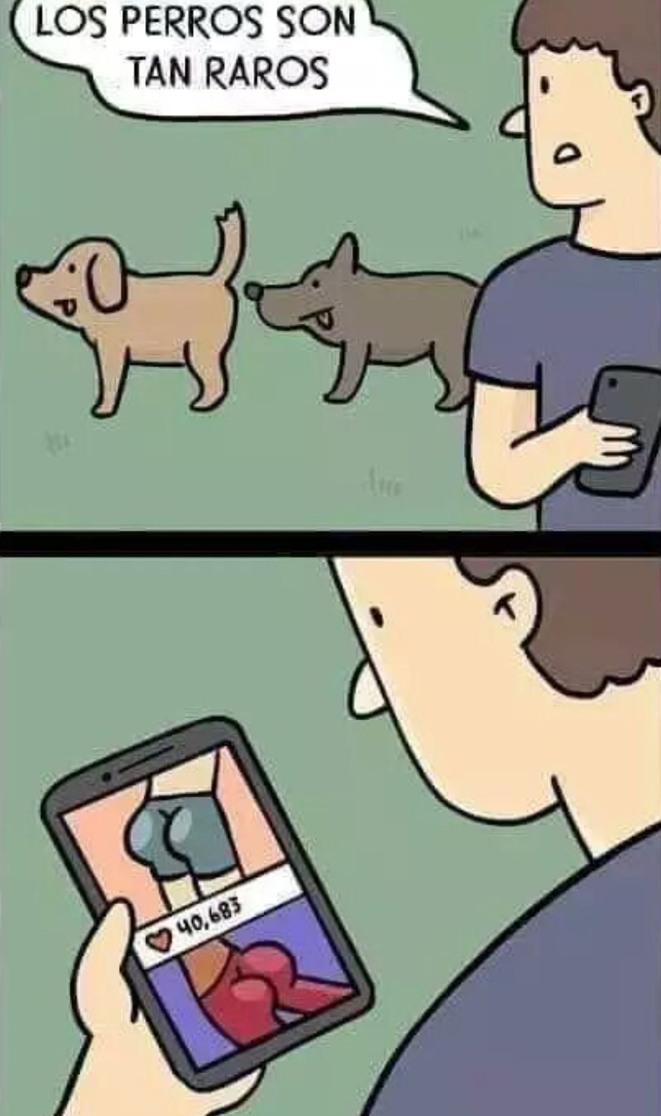 Memes básicos