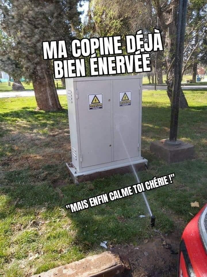 Cours de physique - meme