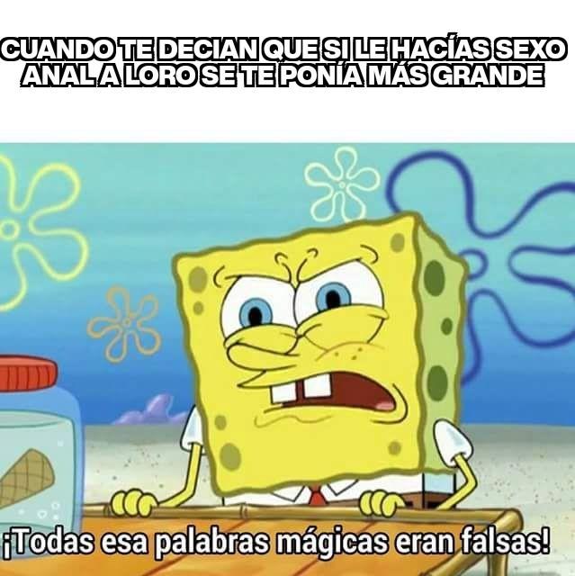 Sacto - meme