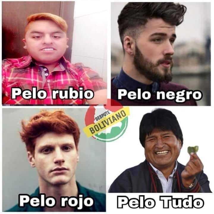 Evo Morales entende que Bolivia dijo NO - meme