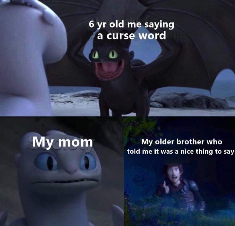 Damn it steve - meme