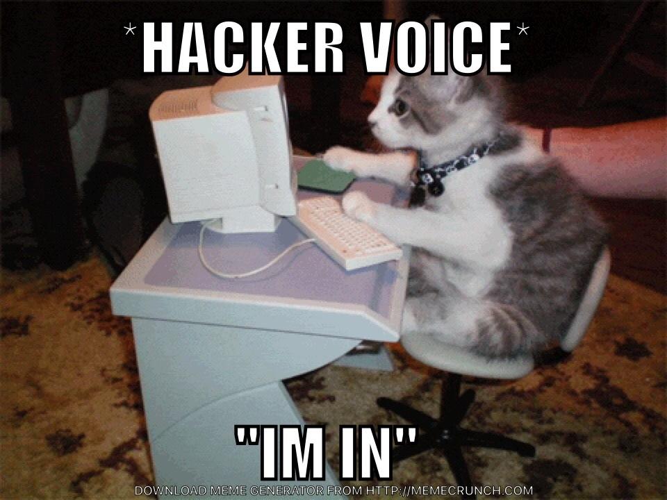 hacker lay - meme
