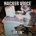 hacker lay