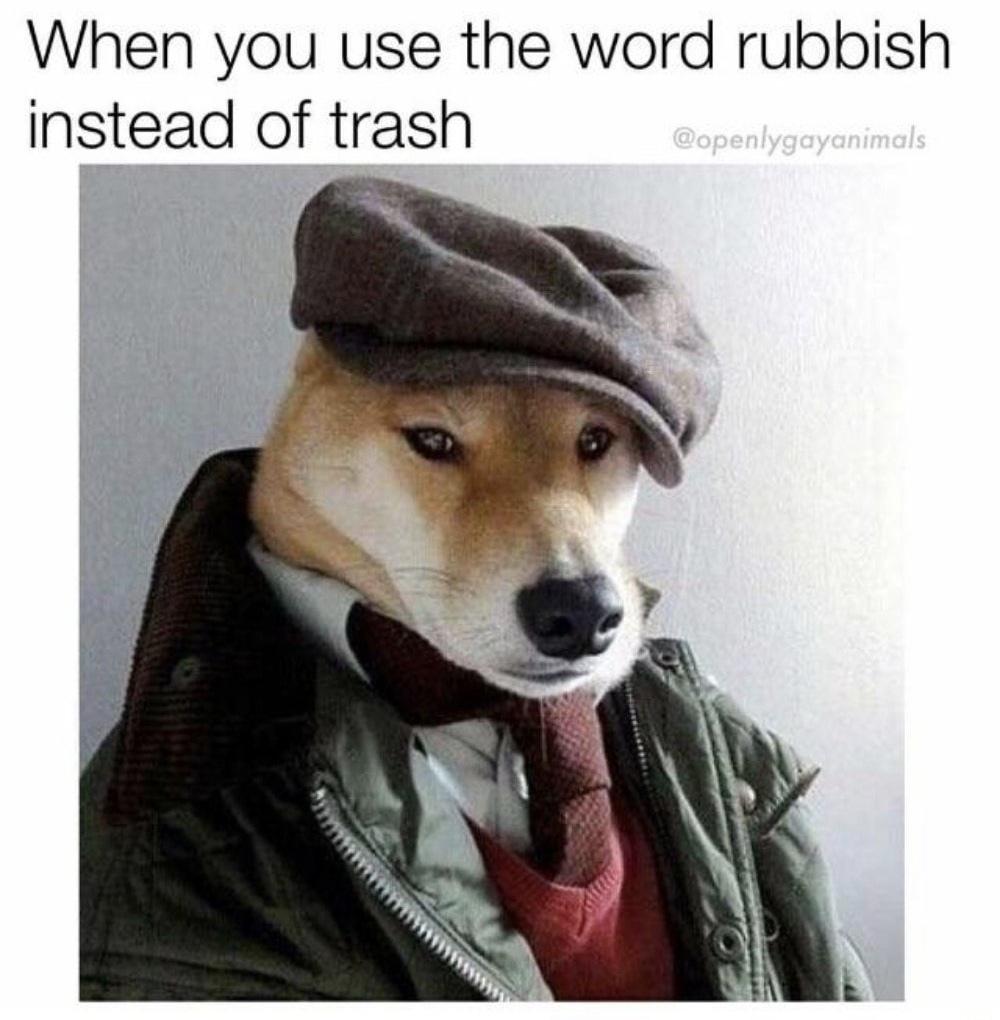 Bark bark - meme