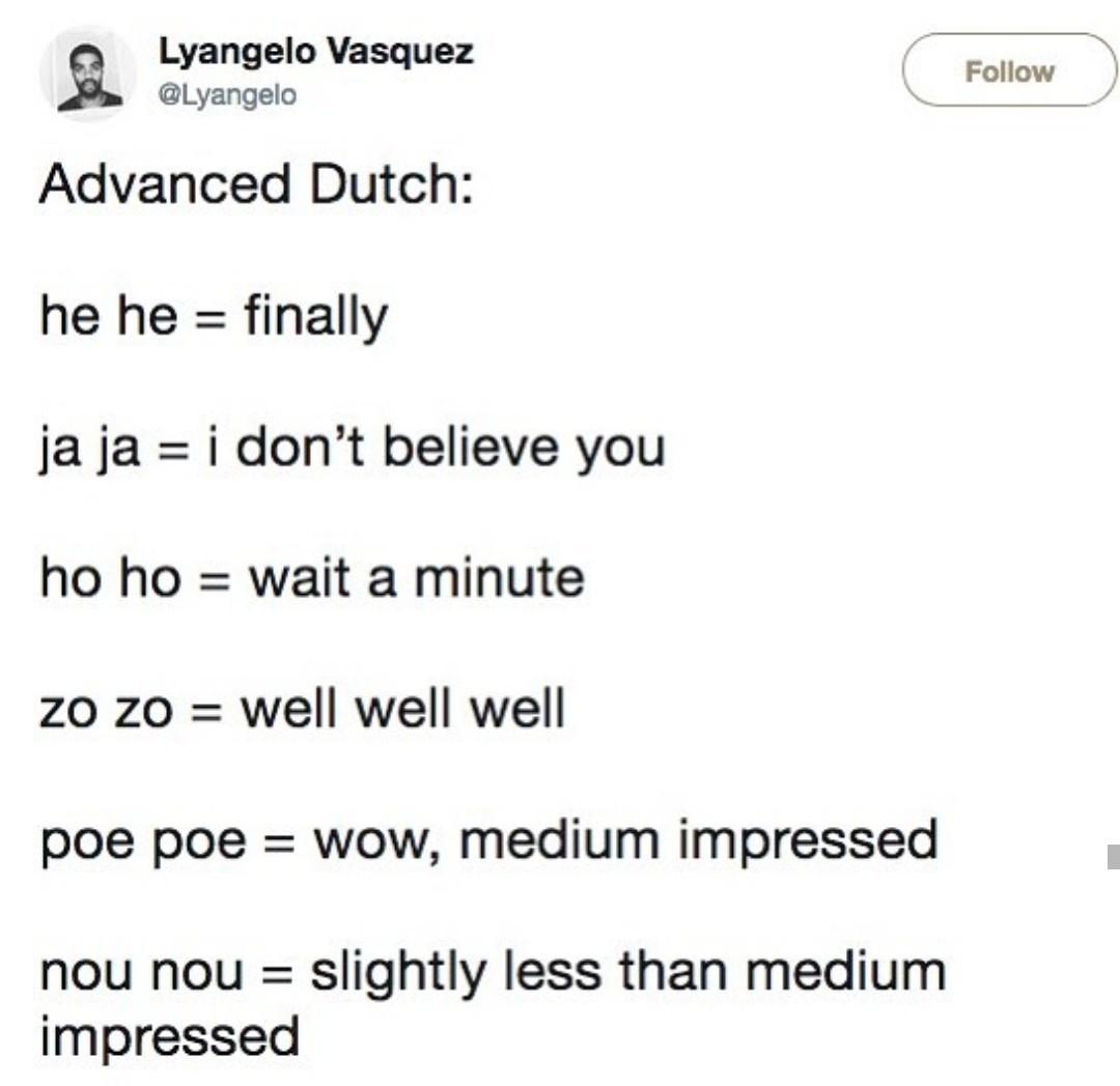 You are now officially a Dutch citizen - meme