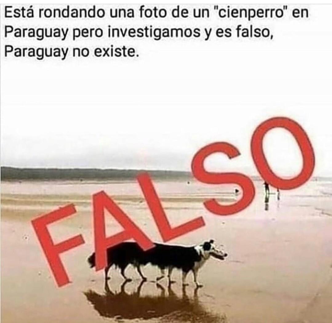 FALSOOO - meme
