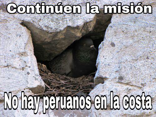 Los quiero peruanos - meme