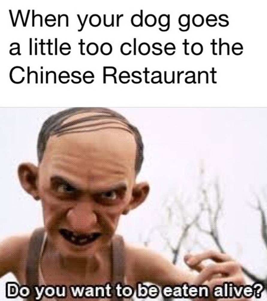 Do you like Chinese food? - meme