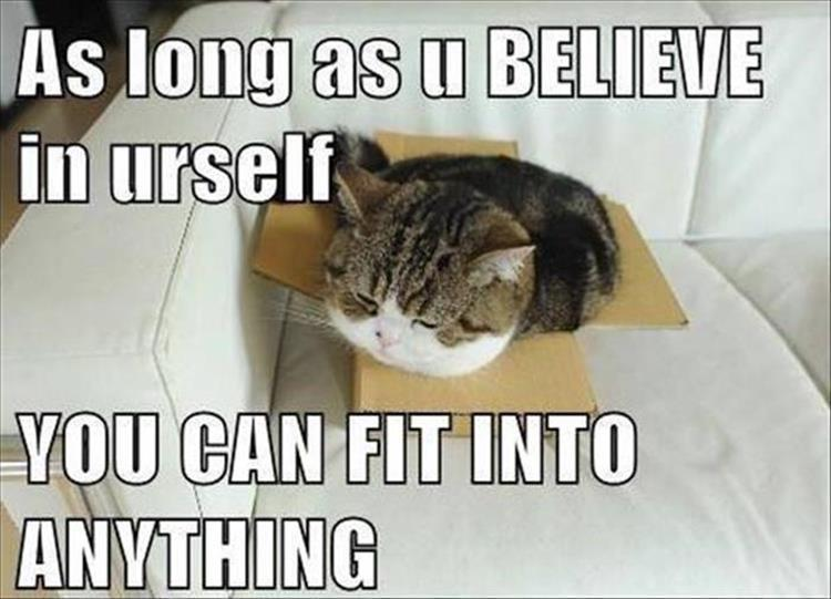 Motivational kitteh - meme