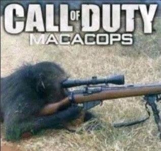 Mono's Duty - meme