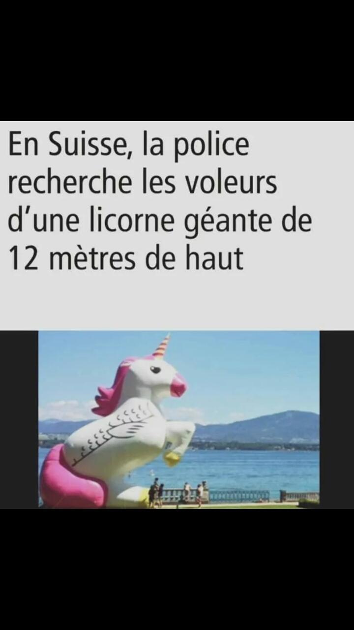 Recherche licorne en suisse