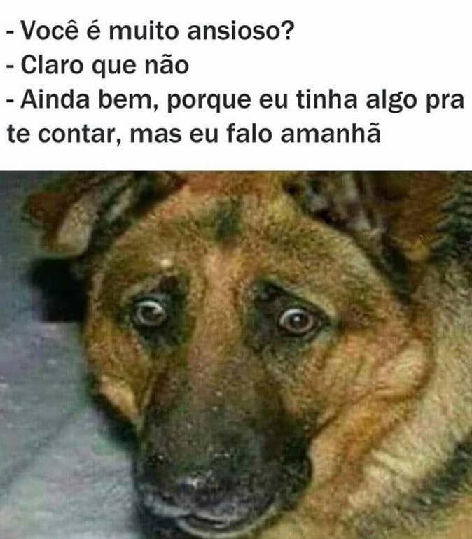 Cachorro ansioso - meme