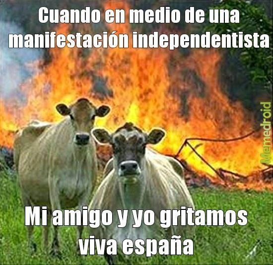 BIBA ESPAÑA - meme