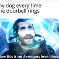*Doggo bark*