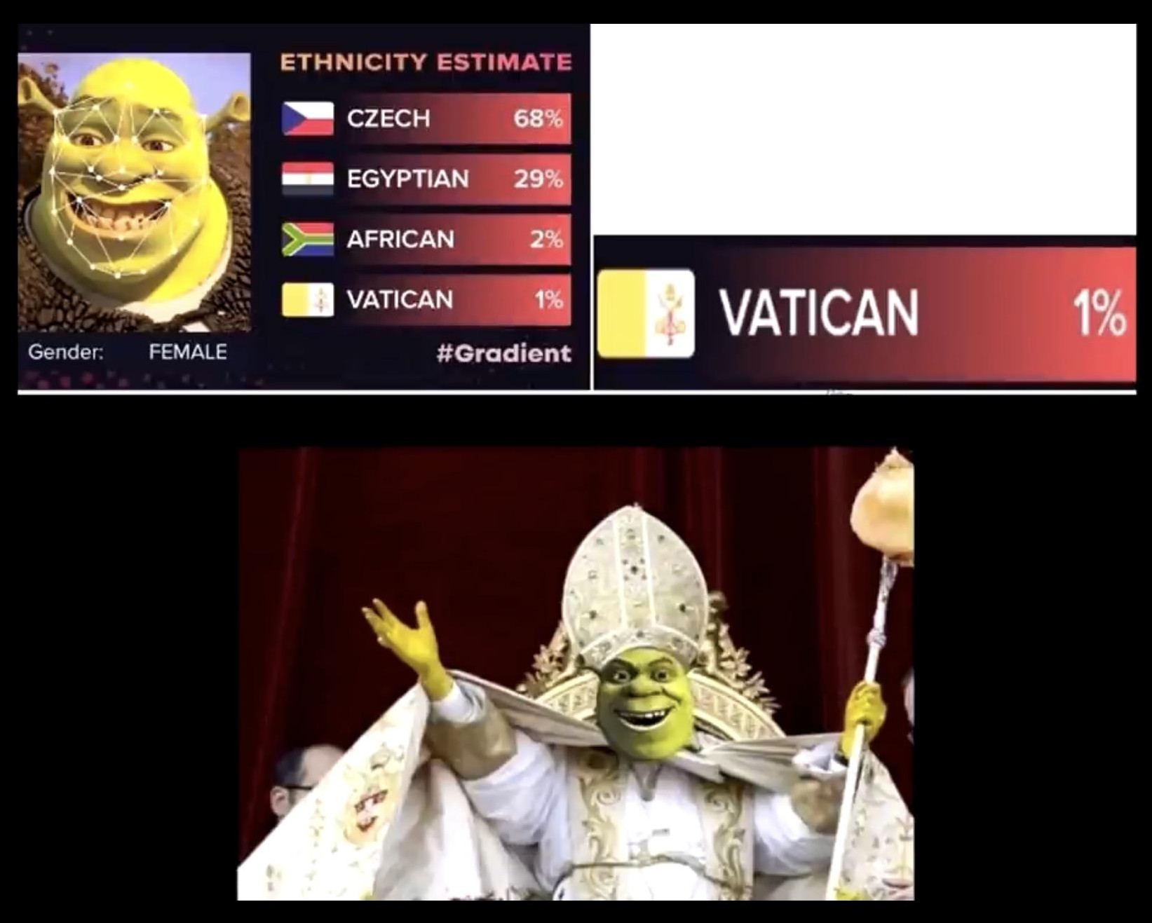 Shrek : The Pope - meme