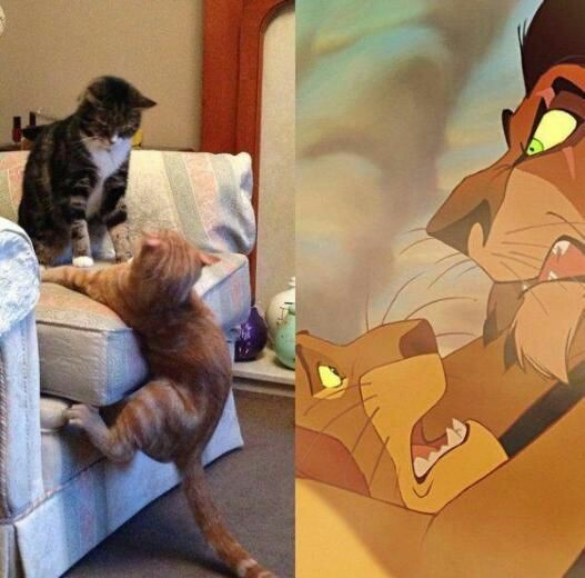 Leaked images from lion king live action , Meme by
