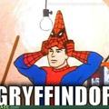 Spider Potter