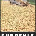 Suddenly, potatoes