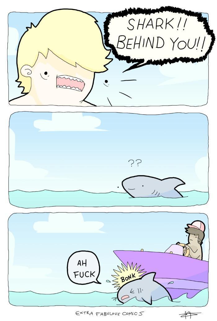 Shark !!! - meme