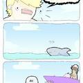 Shark !!!