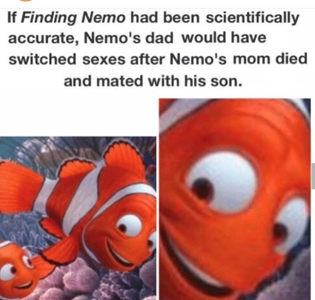 Son... - meme
