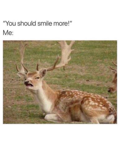 Deer - meme