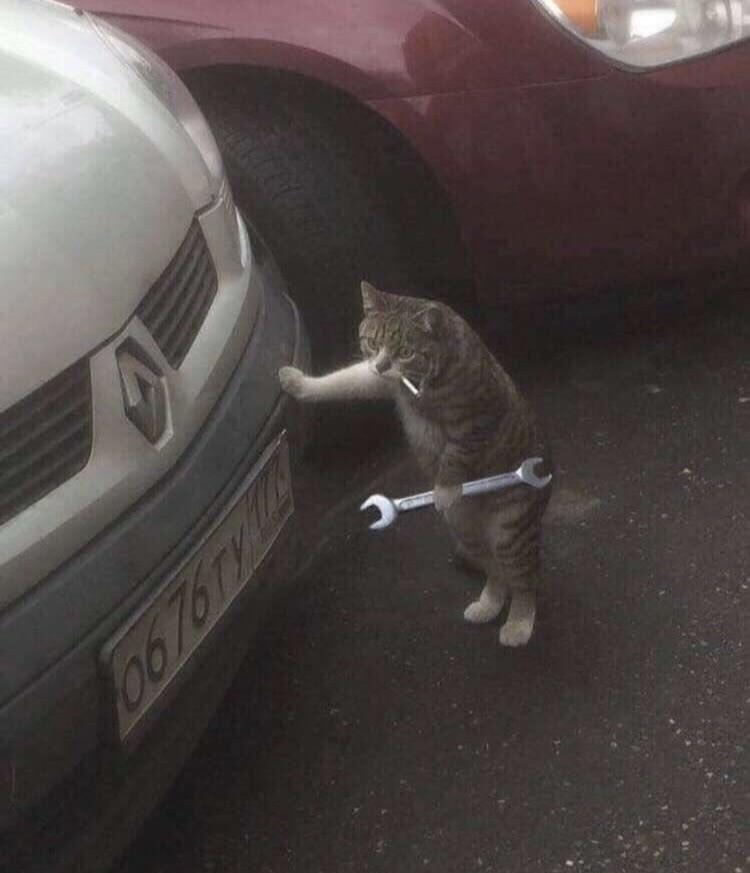 Lava-Gato - meme