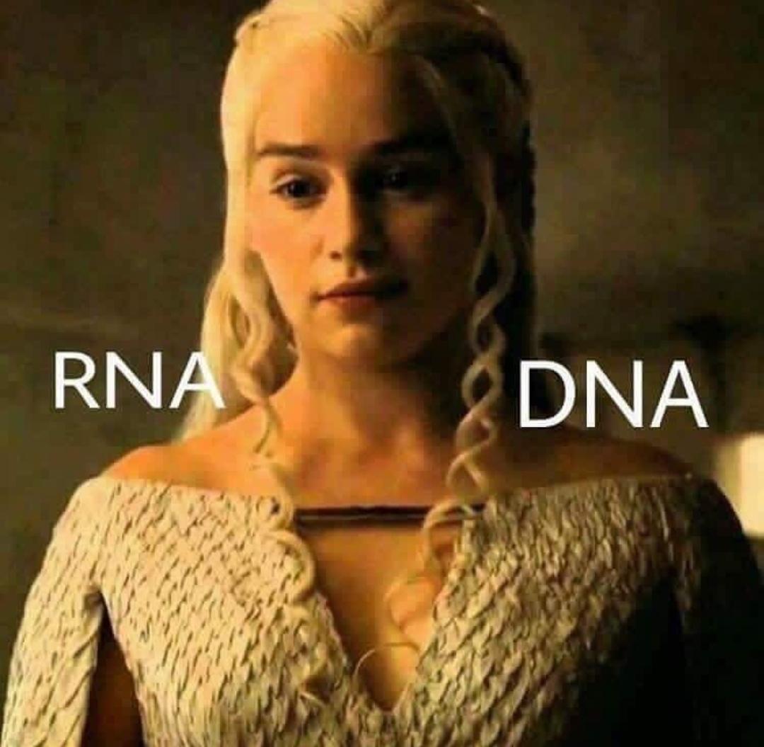 Repare nos cabelos da Daenerys gostosa. - meme