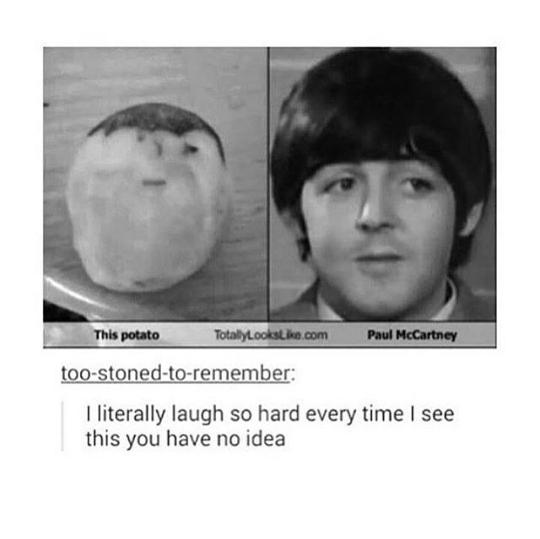 ahhahaha Paul <3 - meme