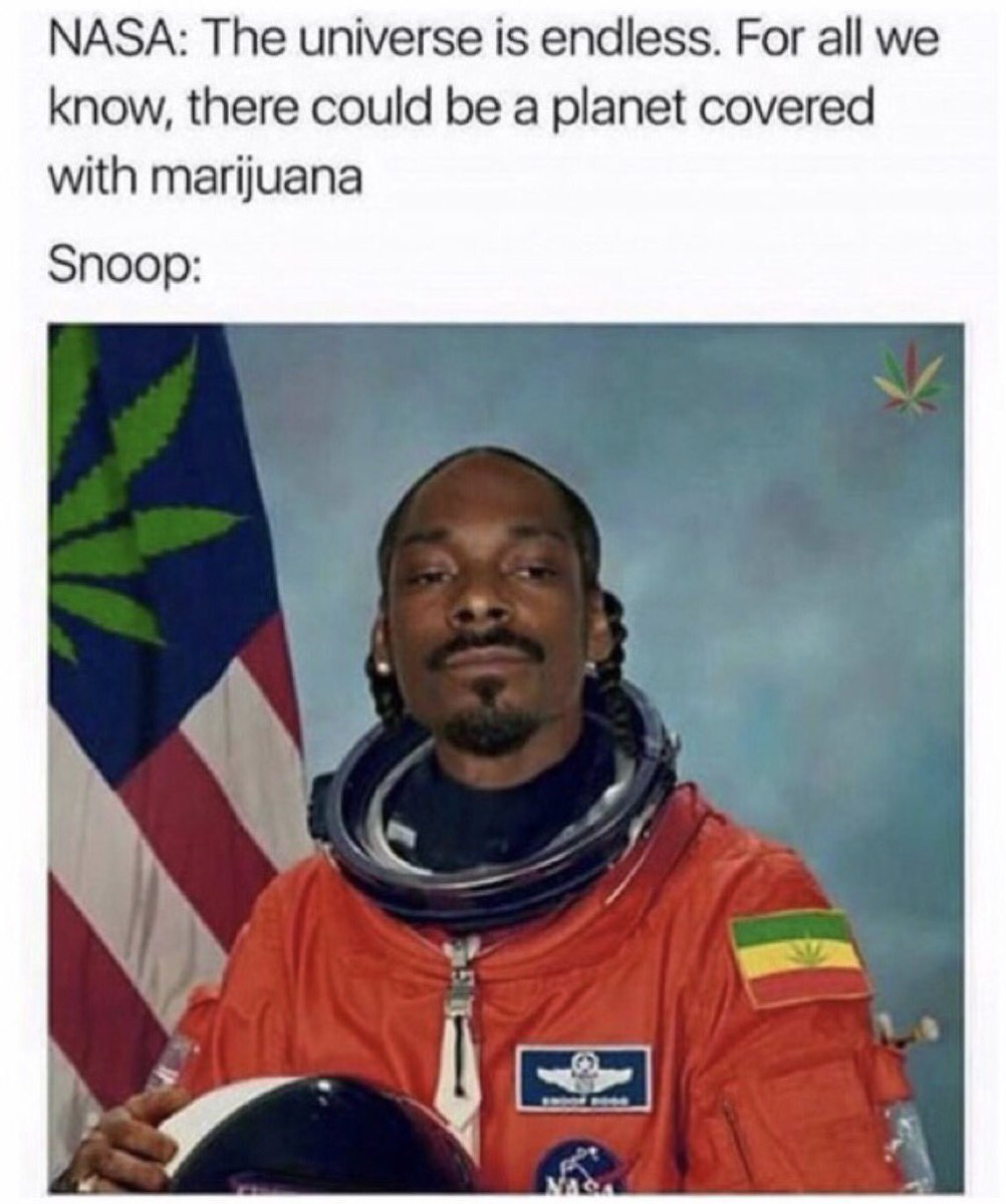 Snoop Dog is an astronaut now - meme