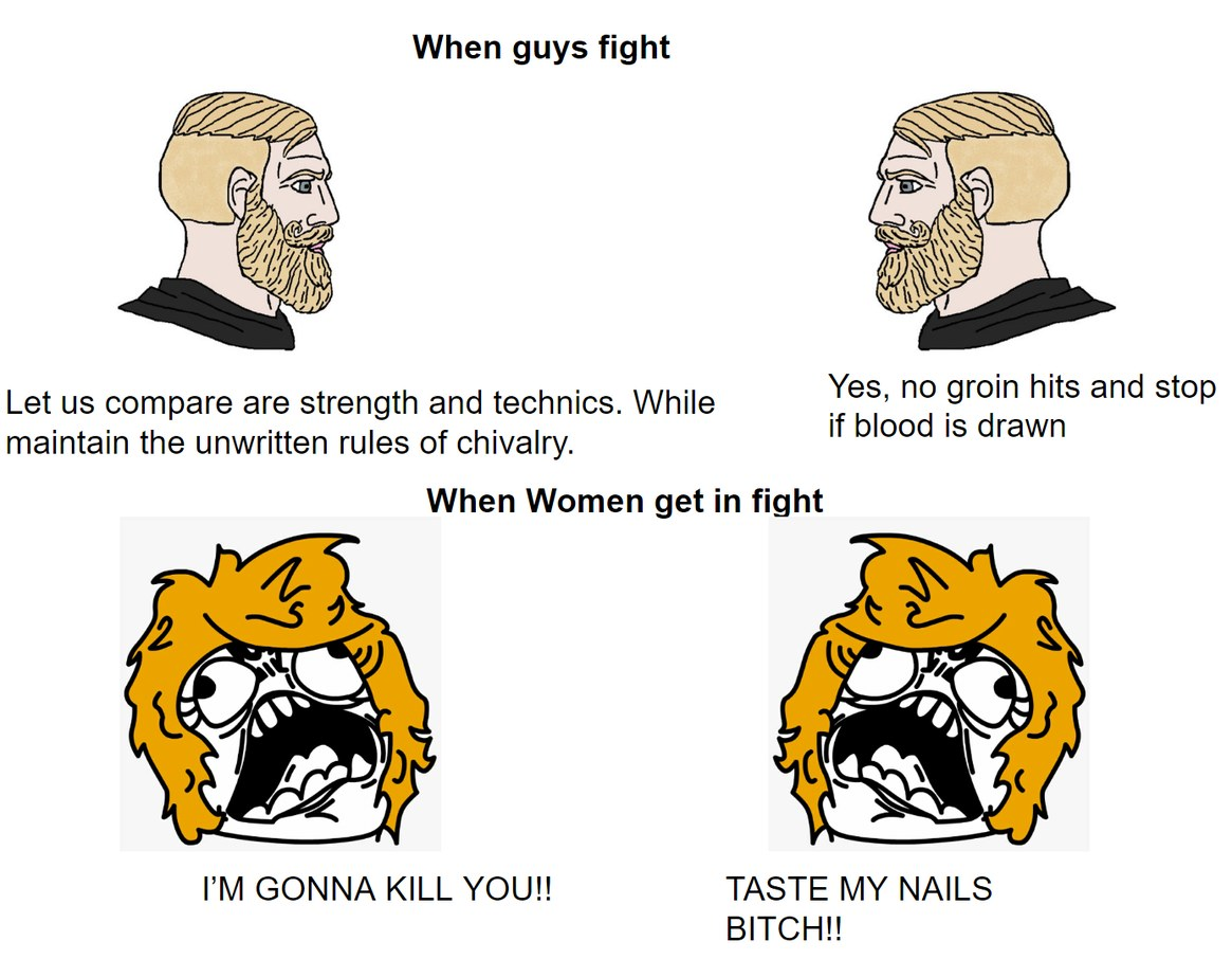 when girls fight its vicious. - meme