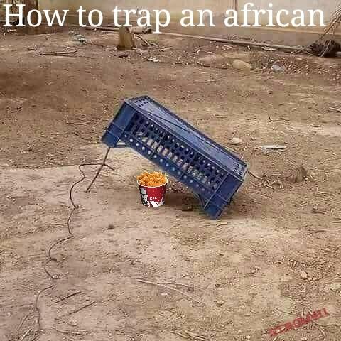 Comment attraper un africain - meme