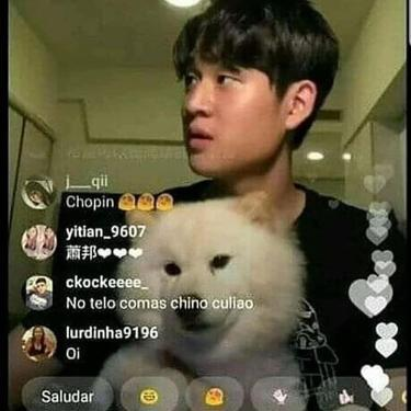F por el perrito - meme
