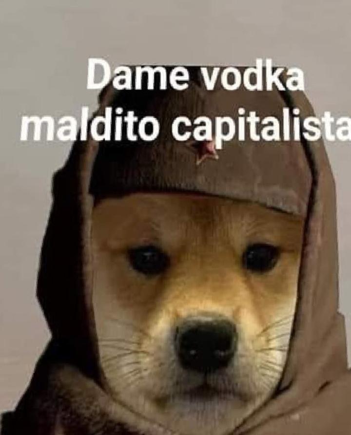 Quero vodka caralho - meme