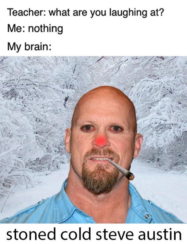 stoned cold steven austin - meme