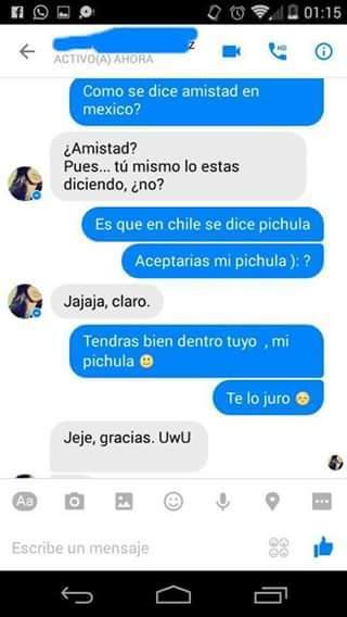 Pichula=pene - meme