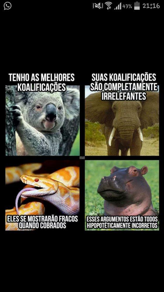 Animais - meme
