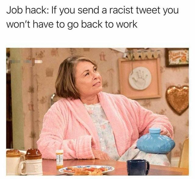 Roseanne's job hack: send a racist tweet and you won't have to work - meme