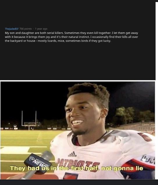 First half - meme
