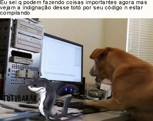 (Tutubarão) Catiorro programador - meme