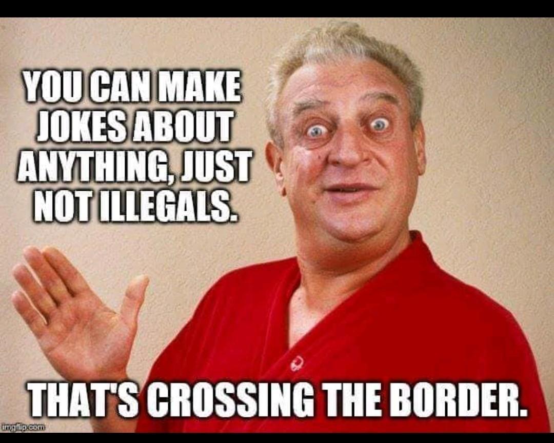 Wait. That's illegal. - meme