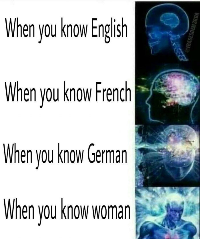Knowing languages - meme