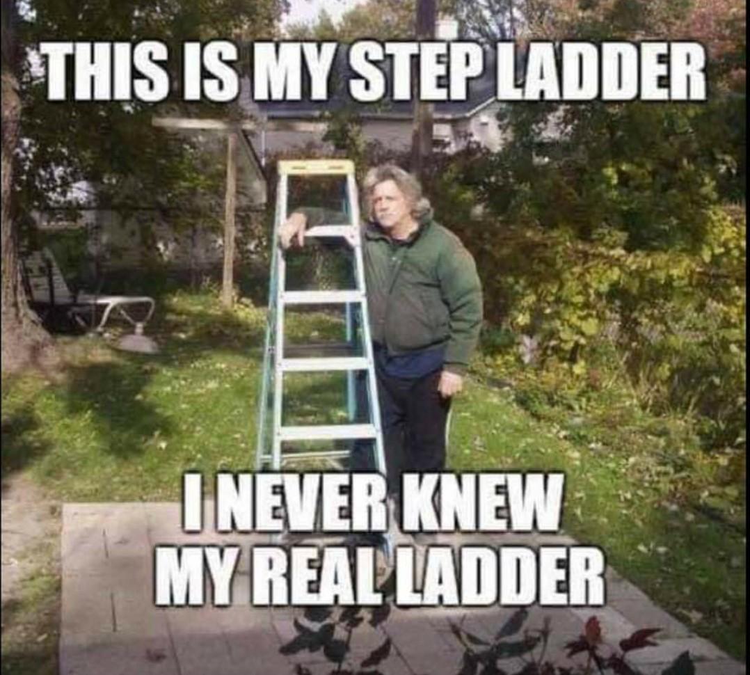 Step Ladder - meme