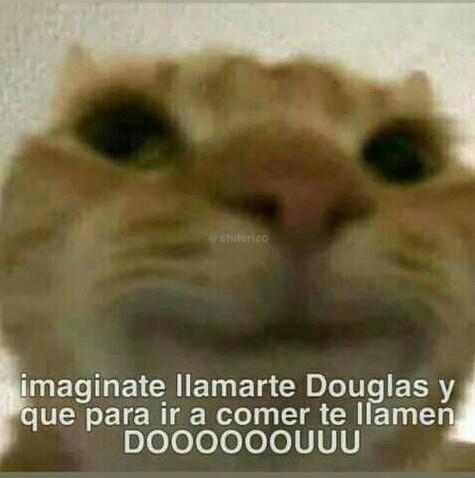 DOUglas - meme