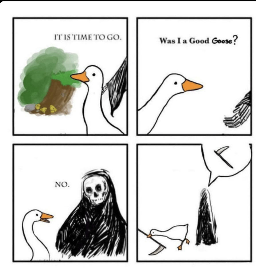 Leaving was never an option - meme