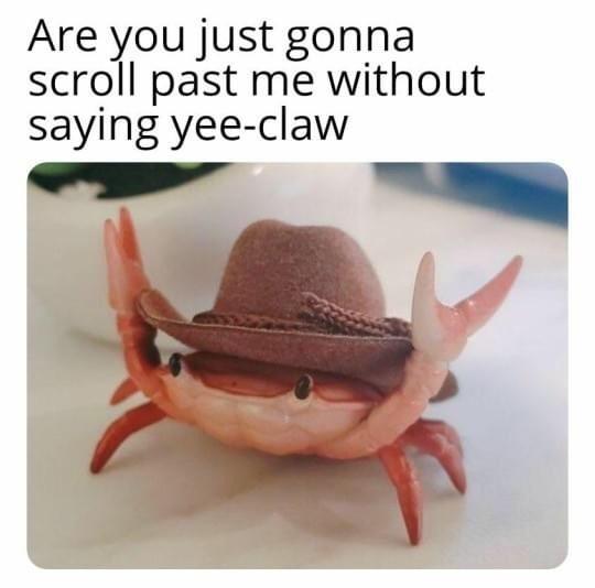 yeeeeeee claaaw - meme