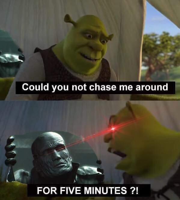 Insert turtle - meme