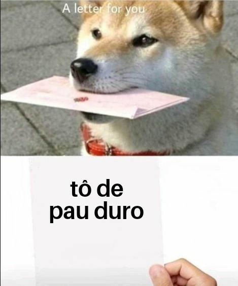 Dogão - meme
